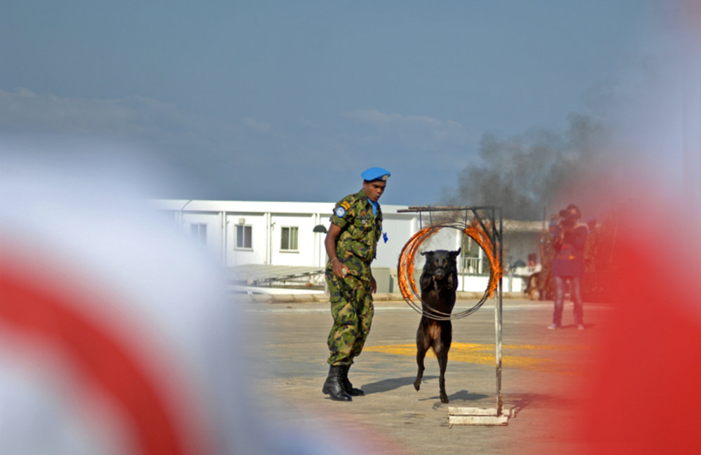 A Dog trained in detecting explosive materials from UNIFIL's Sri Lankan battalion performing acrobatic moves during the International Day of Mine Awareness at UNIFIL HQ in Naqoura.