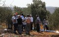 Spanish experts train Lebanese farmers on olive harvesting