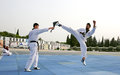 Korean peacekeepers offer Taekwondo training to LAF children