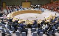 UNIFIL welcomes UN Security Council's unanimous vote on mandate extension