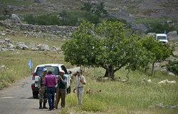 UNIFIL's IndBatt veterinary team